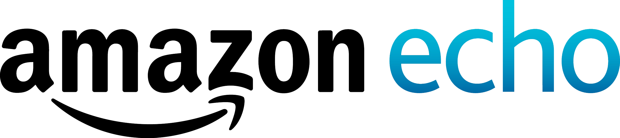 Amazon_Echo_Logo_Hrz_RGB